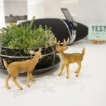 サロンがデザイーナーズ物件専門不動産屋のブログにて紹介されました